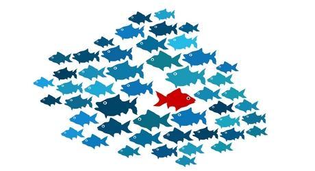 """Résultat de recherche d'images pour """"autisme poisson"""""""