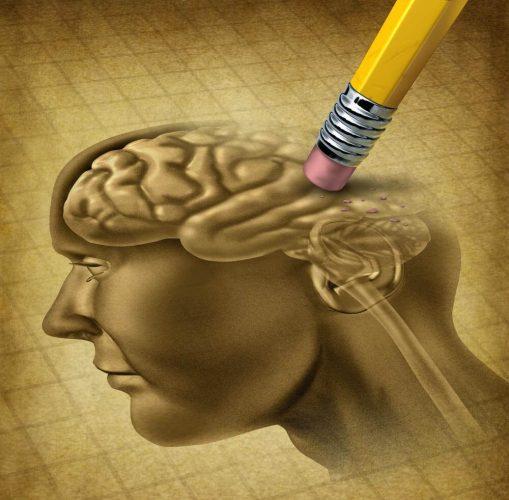5 moyens de garder la mémoire vive !